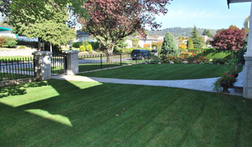 Lawn Installation Vancouver